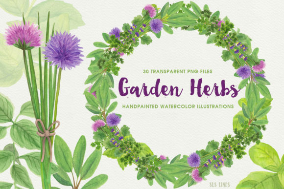 Print on Demand: Herb Garden & Herb Wreaths Watercolors Graphic Illustrations By SLS Lines