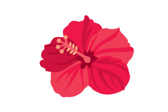 Download Free Hibiscus Svg Cut File By Creative Fabrica Crafts Creative Fabrica for Cricut Explore, Silhouette and other cutting machines.