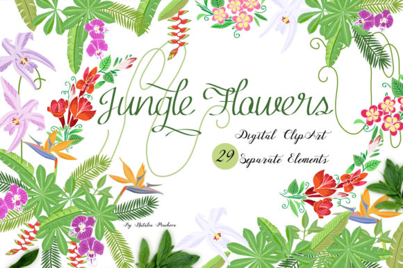 Print on Demand: Jungle Clipart with Flowers Graphic Illustrations By natalia.piacheva