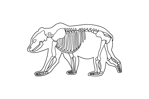 Download Free Line Art Of Bear Skeleton Inside Silhouette Of Body Svg Cut File for Cricut Explore, Silhouette and other cutting machines.