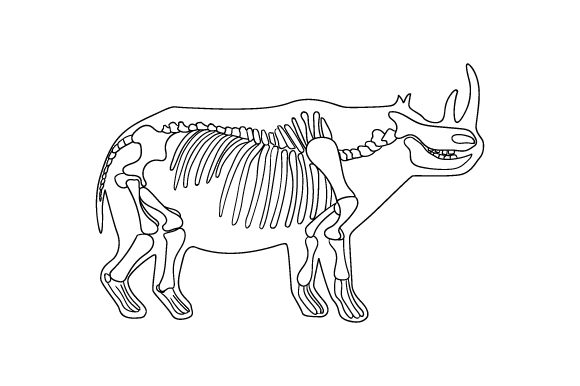 Line Art of Rhinoceros Skeleton Inside Silhouette of Body Halloween Craft Cut File By Creative Fabrica Crafts