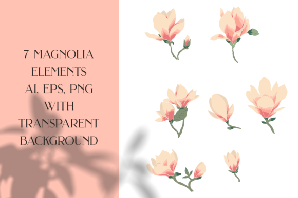 Magnolias Garden Graphic Illustrations By BilberryCreate - Image 5