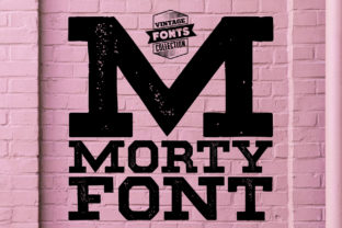 Morty Font By grin3