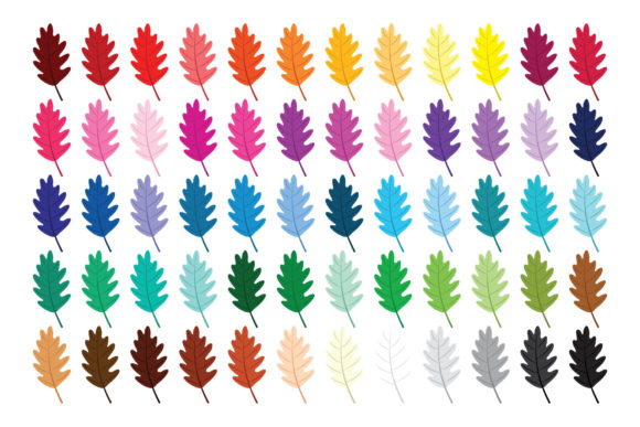 Oak Tree Leaf Clip Art Set Graphic Download