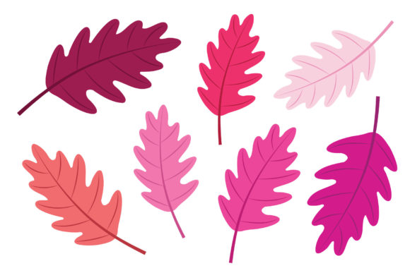 Oak Tree Leaf Clip Art Set Graphic Item