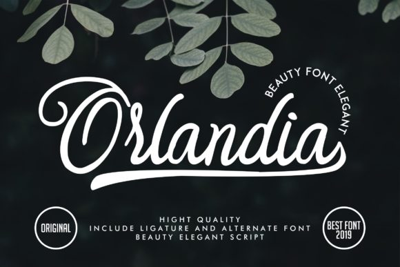 Print on Demand: Orlandia Script & Handwritten Font By Vunira