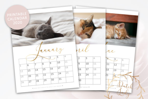 Print on Demand: Printable Monthly Calendar 2020 Cats Graphic Print Templates By daphnepopuliers - Image 1