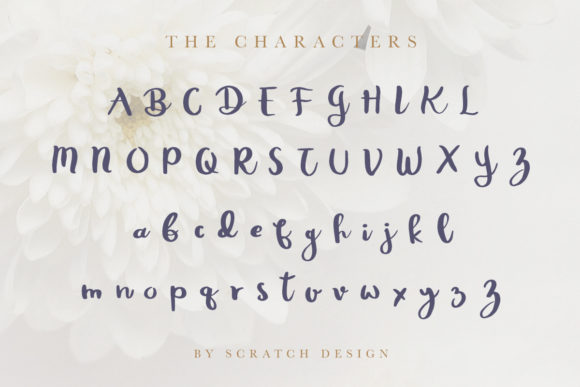 Print on Demand: Rheydo Script & Handwritten Font By Scratch Design - Image 2