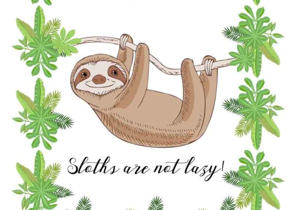 Sloths in Jungle Digital Clipart  Animal Graphic By natalia.piacheva Image 3