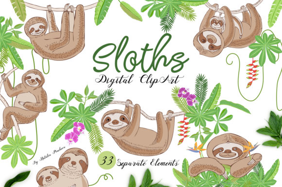 Print on Demand: Sloths in Jungle Digital Clipart  Animal Graphic Illustrations By natalia.piacheva