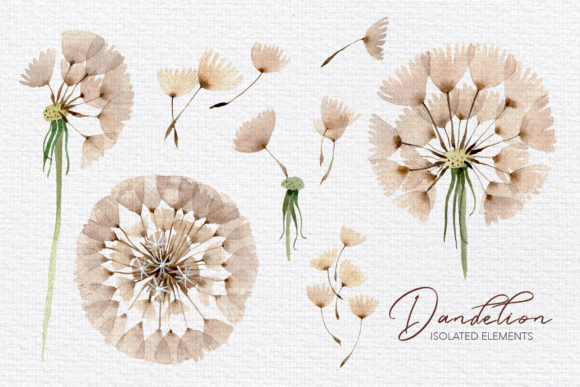 Summer Dandelion Collection Watercolor Graphic By MyStocks Image 7
