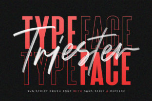 Print on Demand: Triester Display Font By Maulana Creative