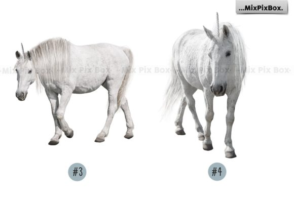 Print on Demand: Unicorn PNG Overlays Pack+ Backdrops Graphic Layer Styles By MixPixBox - Image 8