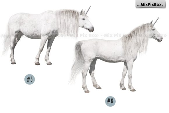Print on Demand: Unicorn PNG Overlays Pack+ Backdrops Graphic Layer Styles By MixPixBox - Image 9
