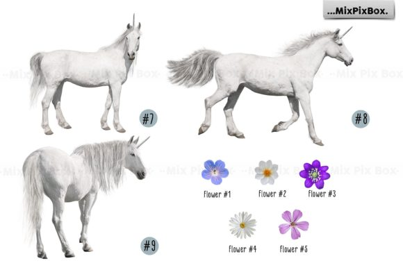 Print on Demand: Unicorn PNG Overlays Pack+ Backdrops Graphic Layer Styles By MixPixBox - Image 10