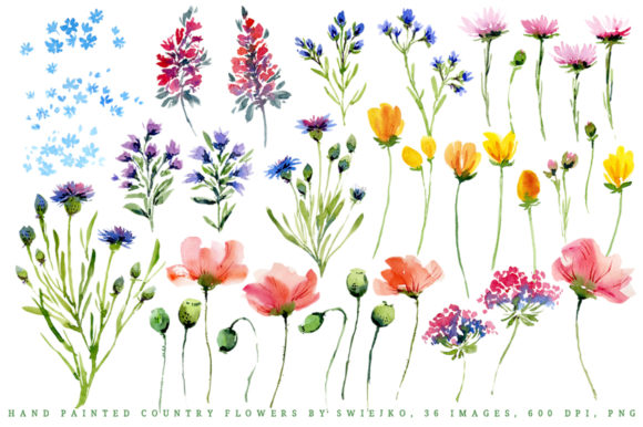 Watercolor Country Flowers I Graphic Illustrations By swiejko - Image 2