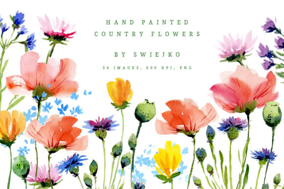 Print on Demand: Watercolor Country Flowers I Graphic Illustrations By swiejko