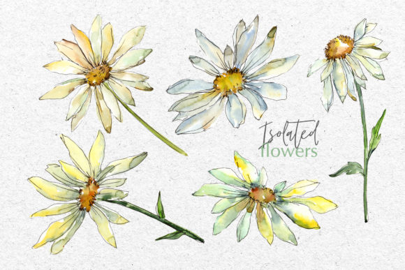 Print on Demand: Watercolor Daisy PNG Set Graphic Illustrations By MyStocks - Image 7