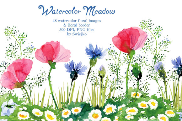 Print on Demand: Watercolor Meadow Flowers Graphic Illustrations By swiejko