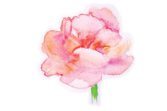 Download Free Watercolor Peony Svg Cut File By Creative Fabrica Crafts for Cricut Explore, Silhouette and other cutting machines.