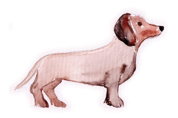 Watercolour Dachshund Spring Craft Cut File By Creative Fabrica Crafts