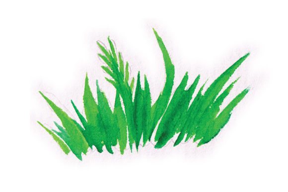 Watercolour Grass Patch Spring Craft Cut File By Creative Fabrica Crafts