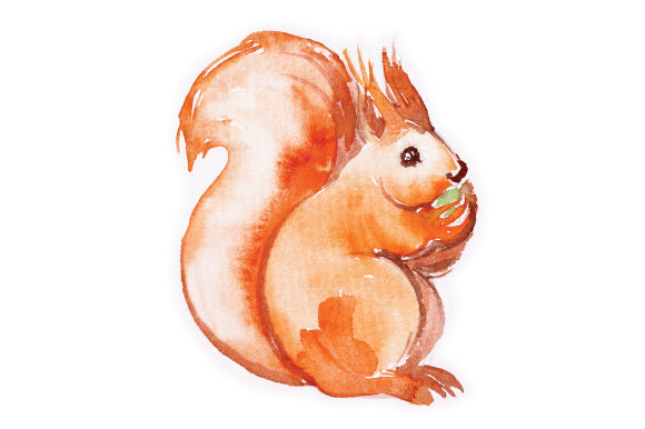 Watercolour Squirrel Spring Craft Cut File By Creative Fabrica Crafts