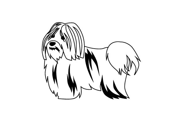 White Havanese Dog Dogs Craft Cut File By Creative Fabrica Crafts - Image 2