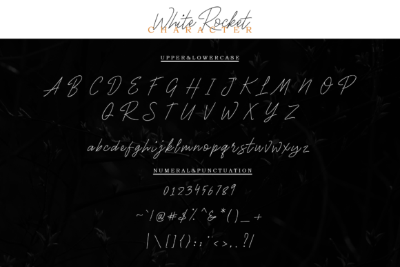 Print on Demand: White Rocket Script & Handwritten Font By Typia Nesia - Image 6