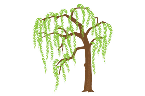 Download Free Young Willow Tree Svg Cut File By Creative Fabrica Crafts for Cricut Explore, Silhouette and other cutting machines.