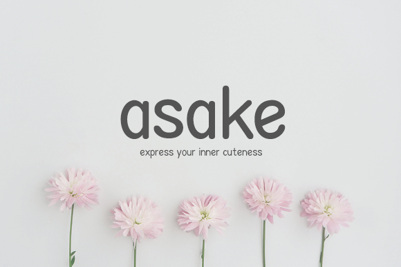 Print on Demand: Asake Sans Serif Font By letterlogy