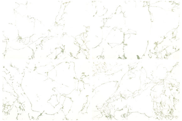 Download Free Abstract Marble Backgrounds Graphic By Bonadesigns Creative for Cricut Explore, Silhouette and other cutting machines.