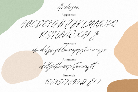 Print on Demand: Anderson Script & Handwritten Font By Pasha Larin - Image 9