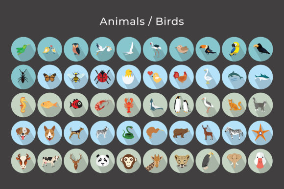Animals, Birds Vector Flat Icons Graphic Preview