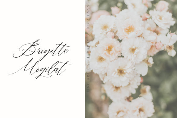 Print on Demand: Avenia Script & Handwritten Font By Dmitrii Chirkov - Image 8