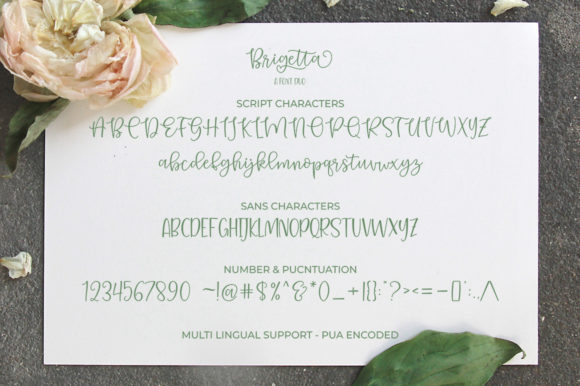 Print on Demand: Bargetta Duo Script & Handwritten Font By supotype - Image 7