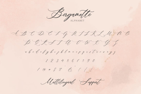 Print on Demand: Bergamotte Script & Handwritten Font By Dmitrii Chirkov - Image 8