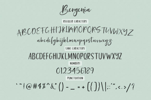 Print on Demand: Bergenia Duo Script & Handwritten Font By Zane Studio - Image 6