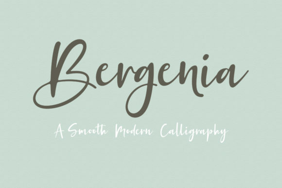 Print on Demand: Bergenia Duo Script & Handwritten Font By Zane Studio - Image 9