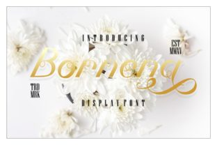 Bornena Font By putracetol