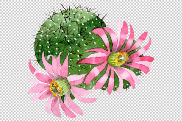 Download Free Cactus Green Spiny Ordinary Flower Graphic By Mystocks for Cricut Explore, Silhouette and other cutting machines.