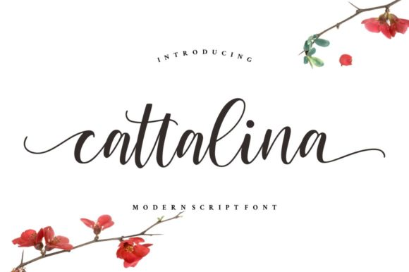 Print on Demand: Cattalina Script & Handwritten Font By goodjavastudio
