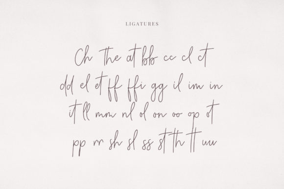 Print on Demand: Charleston Script & Handwritten Font By paulhewittype - Image 5