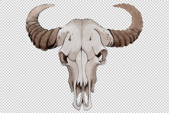 Print on Demand: Cow Skull Watercolor Graphic Illustrations By MyStocks - Image 3