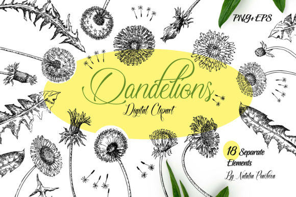 Print on Demand: Dandelions Sketches Clipart Graphic Illustrations By natalia.piacheva