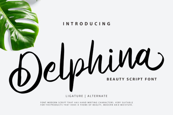 Print on Demand: Delphina Script & Handwritten Font By Vunira