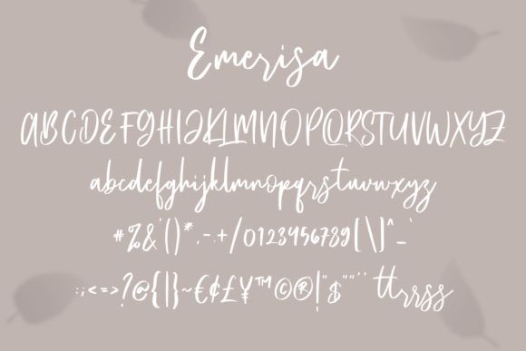 Print on Demand: Emerisa Script & Handwritten Font By Maulana Creative - Image 2