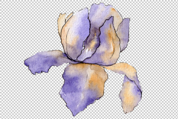 Print on Demand: Eurobuket Irises Blue Watercolor Png Graphic Illustrations By MyStocks - Image 5
