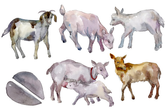 Download Free Farm Animals Goat Watercolor Png Graphic By Mystocks Creative for Cricut Explore, Silhouette and other cutting machines.