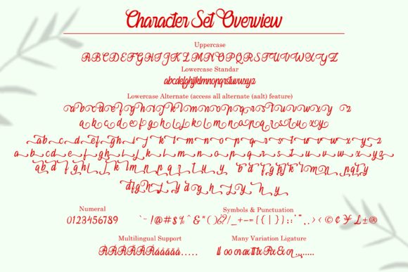 Print on Demand: Ferishley Sunshine Script & Handwritten Font By Holydie Studio - Image 3